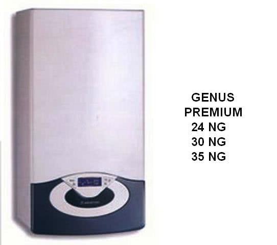 genus_premium_138.jpg